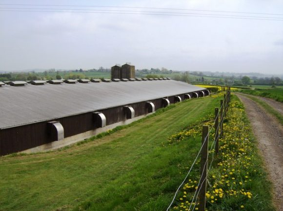 The exterior of a farm.