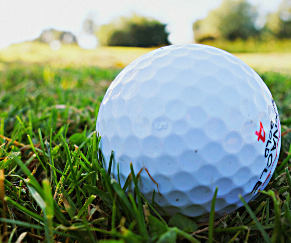 A golf ball on grass.