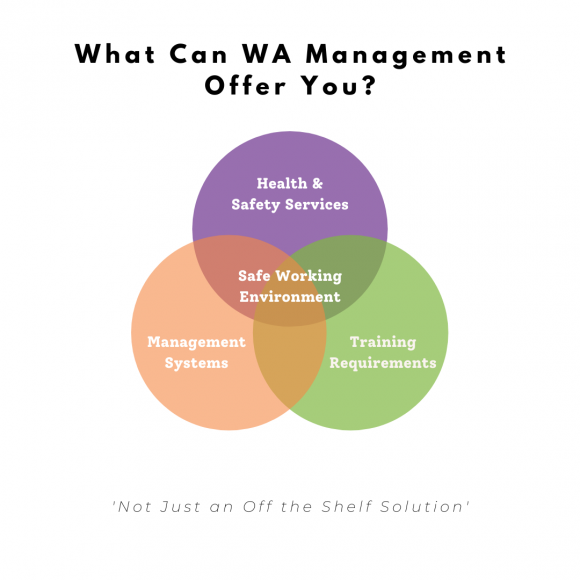 What Can WA Management Offer You venn diagram including Health & Safety Services, Management Systems and Training to create a safe working environment.