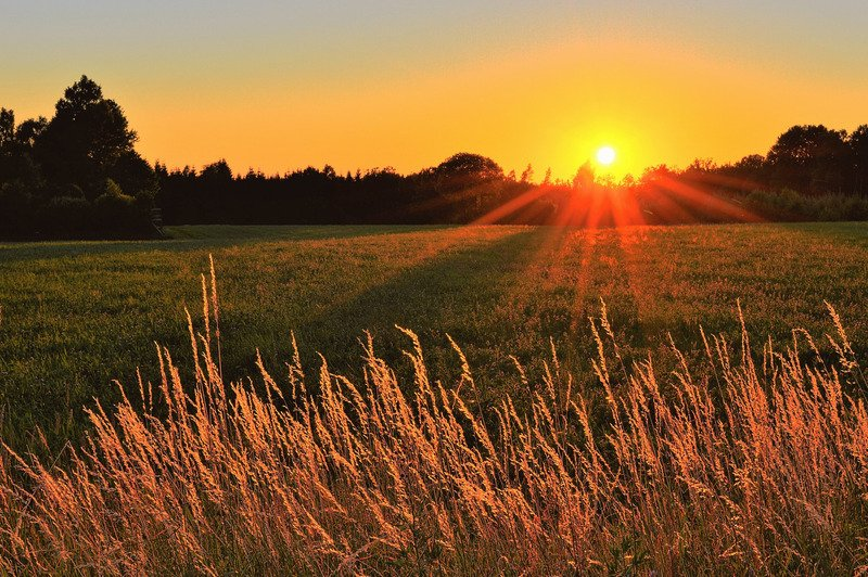 The sun setting on a field.