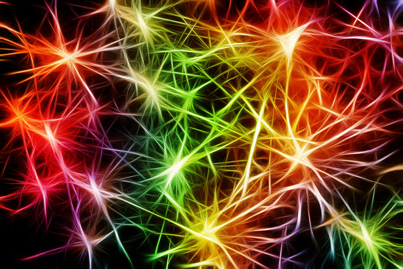 Brightly coloured neurons